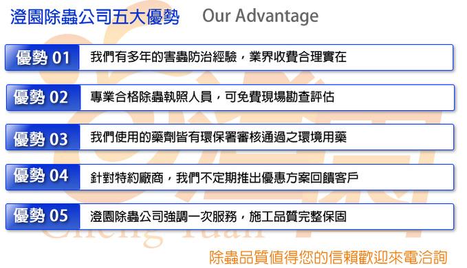 台南除蟲公司、台南白蟻防治